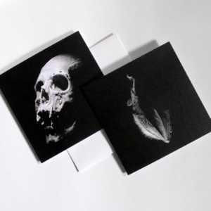 Skull and bat cards