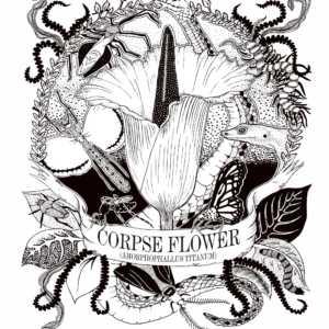 Corpse Flower Illustration