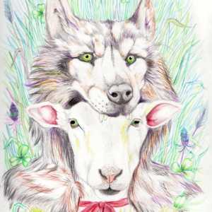 Sheep in Wolves Clothing Illustration
